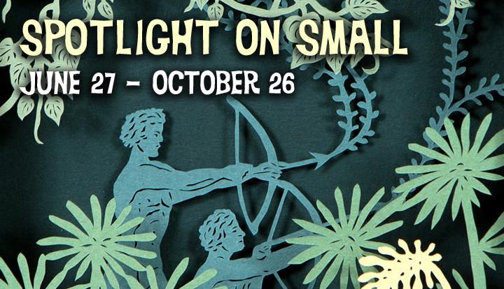 Spotlight on Small